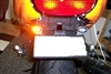 TRIUMPH SPEED FOUR STD LED FENDER ELIMINATOR KIT